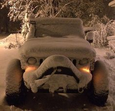 Jeep with what looks like a big smile. knowing that he can handle whatever weather sends him! Jeep 4x4, Jeep Truck, Pickup Trucks, Jeep Pickup, Hors Route, Jeep Wrangler Unlimited, Wrangler Jeep, Jeep Rubicon, Bicycles