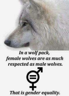 i support and love this but i would just like to say humans arent wolves we can't follow like them because of the past, sadly. I wish we were like this