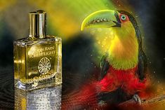 For the launch of my new collection Vetiver Expressionism by Flower by the end of this year, I will be offering free samples to bloggers (number limited). If you wish to review them, kindly send me an email of presentation at contact@nadiaz.ch #Perfume