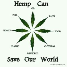 Cannabis Infographics. Benefits of hemp. Save our world.