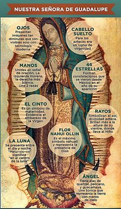 Symbols in the image of Our Lady of Guadalupe Catholic Prayers, Catholic Art, Religious Art, Catholic Saints, Blessed Mother Mary, Blessed Virgin Mary, Madonna, Queen Of Heaven, Mama Mary