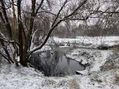 Vinnyman's Birding and Nature Blog.: Babbs Mill Nature Reserve, Kingshurst.