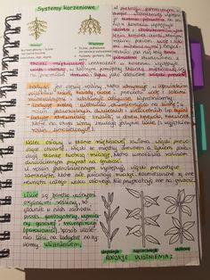 Note Taking, Study Notes, School Organization, Studying, Handwriting, Geography, Montessori, Back To School, Medicine