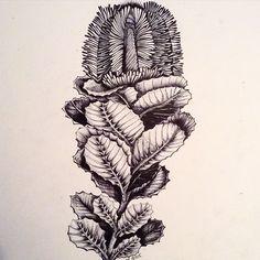 #art #arigart #illustration #instaartist #inkdrawing #indianink #instaink #ink #poster #painting #picture #tattoo  #graphicart #graphic #blackandwhite #artsy #artist #drawing #sketch #графика #blackwhite #иллюстрация #flower #чернобелое #рисунок #природа #искусство #topcreator #nature #цветок