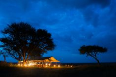 Authentic canvas safari tents are an amazing way to immerse yourself with the wildlife. If you prefer more traditional lodging, we even have a Four Seasons Serengeti to offer our guests. Your comfort and safety are our number one focus!