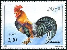 Buy and sell stamps from Algeria. Meet other stamp collectors interested in Algeria stamps. African Development Bank, International Children's Day, Sell Stamps, Stamp Catalogue, Child Day, Bird Species, Stamp Collecting, Vintage Patterns, Postage Stamps