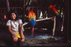 Los Huaorani viven en el Yasuní.