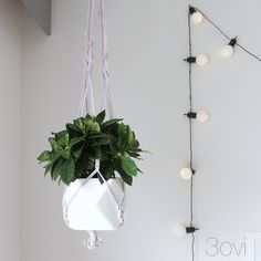 3ovi: diy macrame plant hanger