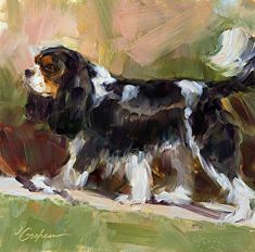Rocky od Lindsey Bittner Graham, Oil, 8 x 8 Cavalier King Charles Dog, King Charles Spaniel, King Spaniel, Southwest Art, Equine Art, Watercolor Animals, Dog Portraits, Animal Paintings, Dog Art