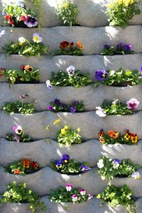 Students tuck plants into Florafelt recycled PET bottle wall.  Lovely simple design.