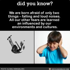 Fears: falling & loud noises (only fears from birth--all others cultural/environmental