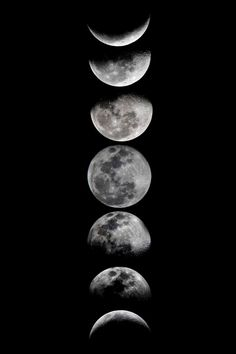 Phases of the Moon – Art Print | Event Horizn
