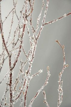 These are cool, and easy to make, I think..  lol  Natural Birch Branches with Glitter & Snow 3-4' tall (5 branches)
