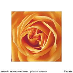 Beautiful Yellow Rose Flower Floral Canvas Print