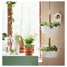 20 DIY Window Hanging Plants Ideas For Your Home Decoration Ikea Plants, Porch Plants, Window Plants, House Plants Decor, Potted Plants, Diy Hanging Planter, Window Hanging, Planter Pots, Decoration Plante