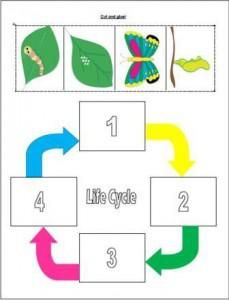 Spring Butterfly Life Cycle Preschool Printable