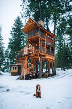 Off Grid Tiny House, Tiny House Cabin, Tiny House Living, Tiny House On Wheels, Hut House, Town House, Living Room, Beautiful Tree Houses, Cool Tree Houses