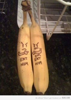 Banana fight: Eat him! No, eat him!
