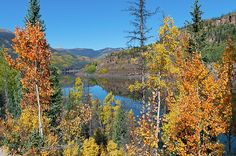 Rio Grande Reservoir Autumn', a fine art mountain landscape photograph by Lynn Cyrus / Cascade Colors. Vivid, colorful orange, yellow, gold, green, and blue tones fill this scene taken in the Rio Grande National Forest between Creede and Lake City, Colorado. Lying within the San Juans range of the Colorado Rocky Mountains, this forest is filled with aspen, pine, and spruce trees. Here, mountain peaks - part of the Weminuche Wilderness - rise in the background.