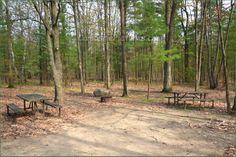 Awenda Provincial Park Ontario Canada Ontario Parks, Outdoor Furniture, Outdoor Decor, Canada, Patio, Plants, Plant, Backyard Furniture, Lawn Furniture