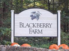 blackberry farms