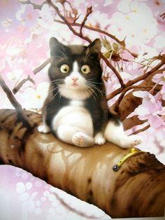 black and white cat - Makoto Muramatsu