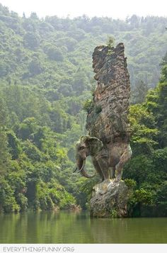 awesome photo elephant carved out of rock