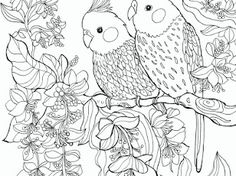 Birds - Google Drive Bible Verse Coloring Page, Coloring Pages, Colouring, Addams Family Characters, Kids Church, Google Drive, Birds, Creative, Journaling