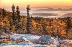 Dolly Sods Wilderness Area, Elkins West Virginia. Hot Birding Spot! Some of the most spectacular scenery on the east coast. With beautiful valley views, and seemingly endless rolling fern pastures. The crown jewel of the Monongahela National Forest. It's a taste of the Canadian high country right in our own back yard. Great Hiking! There are plants here that grow no where else south of the artic circle. Peaceful, beautiful! You will want to come back & again & again!