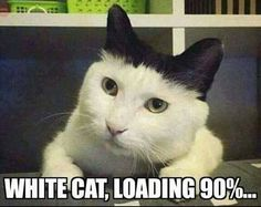 90% loaded