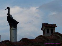 Chimney decoration - duck Chimney Cowls, Baby Fruit, Close My Eyes, Wisteria, Greece, Sunrise, Bbq, Scenery, Decoration