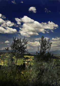 uliveti toscani colline senesi Italia | par Franco Orsi