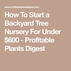 How To Start A Backyard Tree Nursery For Under 600 Profitable Plants Digest