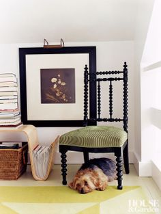 Bruno the dog lies under an antique spindle chair. #houseandgarden