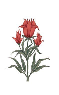 Motifs Textiles, Textile Prints, Arabesque, S8 Wallpaper, Snake Wallpaper, Pichwai Paintings, Motifs Roses, Turkish Art, Botanical Flowers