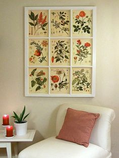 That drafty old window you replaced can serve as an eye-catching grid of frames. A book full of botanical plates is perfect for filling up one of these.