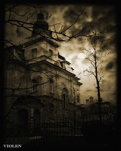 in the midnight hour by Violen's photography, via Flickr