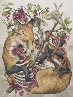 Lauren Marx, Vulpes vulpes, 2015. Ball point pen, Ink pencils, Acrylic ink, Marker, Colored pencil, Graphite, and Gel pen on Hot-Pressed Watercolor Paper, 18 1/4 x 24in