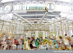 The Yerba Buena Gardens Carousel, a Looff Carousel carved in 1906 by master woodcarver Charles I. D. Looff.  Purchased in 1998 by the City of San Francisco, fully restored, and opened in its current location.