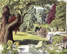 Badmin (Stanley Roy Badmin was an English painter and etcher particularly noted for his book illustrations and landscapes / The Shell Guide to Trees and Shrubs illustrated - July Botanical Illustration, Illustration Art, Book Illustrations, Landscape Art, Landscape Paintings, Ladybird Books, Painted Shells, Nature Table, Flamboyant