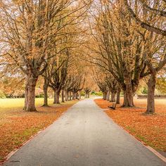 Antony Morris took this photograph in Florence Park Oxford. Use to share your pictures with us England Countryside, Autumn Colours, Autumnal, Big Picture, Travel Around, Florence, Britain, Traveling By Yourself, Oxford