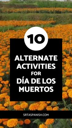 Are you looking for an alternative assignment for Día de los Muertos for your students? Maybe a parent, guardian, or student requested a different activity instead of Day of the Dead in your classroom? Check out this list of 10 ideas you could do instead of Día de los Muertos in your lessons or for an independent project your student could do on their own for research while your middle or high school Spanish class is studying el Día de los Muertos, the Day of the Dead. Click to learn more!
