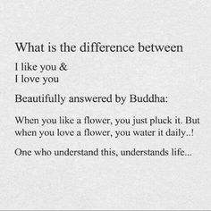 what is the different between...