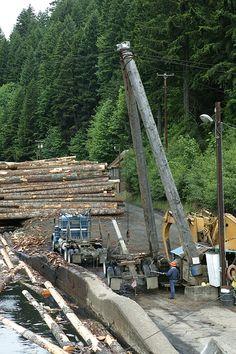 Big Trucks, Semi Trucks, Power Carving Tools, Timber Logs, Lumber Mill, Big Tractors, Logging Equipment, Ho Scale Trains, Big Tree