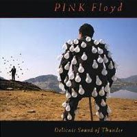 Pink Floyd - The delicate sound of thunder