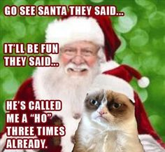 LOL I usually don't care for Grumpy Cat but this one is CUTE!