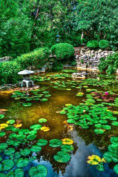 Zilker Botanical Gardens in Austin, courtesy of WhiteHotPhoenix Photography.