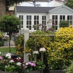 Summerhouse from the Garden Steps Garden Steps, Garden Studio, Bliss, Plants, Garden Stepping Stones, Plant, Planets