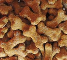 Free Assortment of T Peanut Butter & Pumpkin Dog Treat Recipes (Including Wheat-free! Dog Treat Recipes, Dog Food Recipes, Pumpkin Dog Treats, Wheat Free Recipes, Free Food, Peanut Butter, Bacon, Breakfast, Morning Coffee