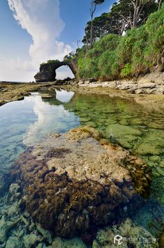 ANDAMAN AND NICOBAR ISLANDS landscape - Google Search